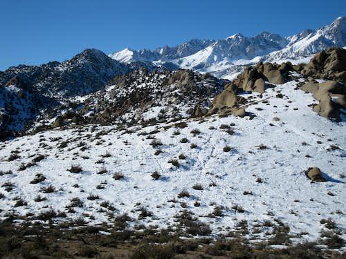 Deer trails in the Buttermilks