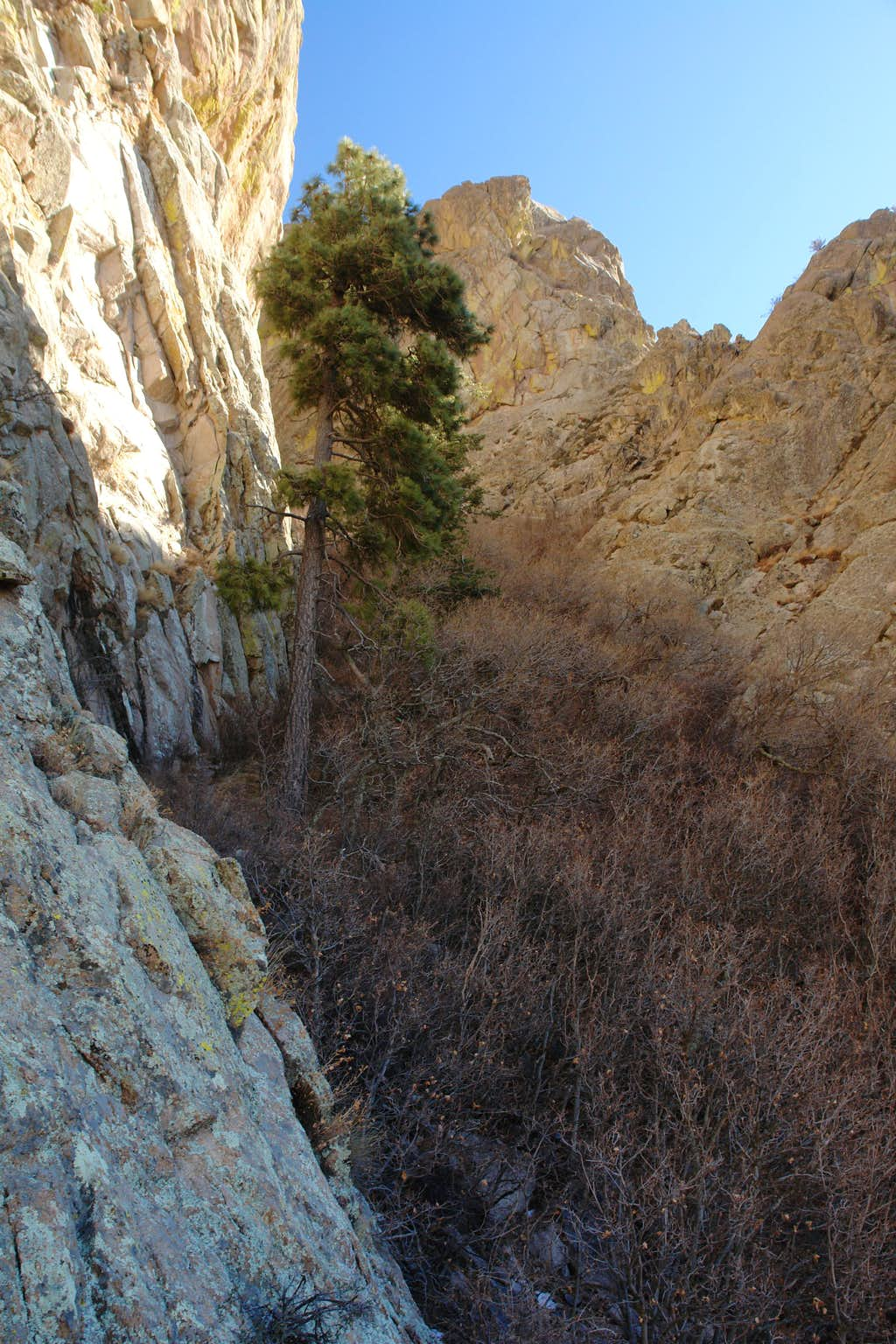 At the mouth of the Dark Canyon