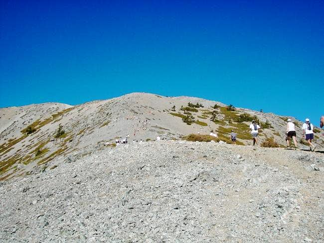 No lonely walk to the summit...
