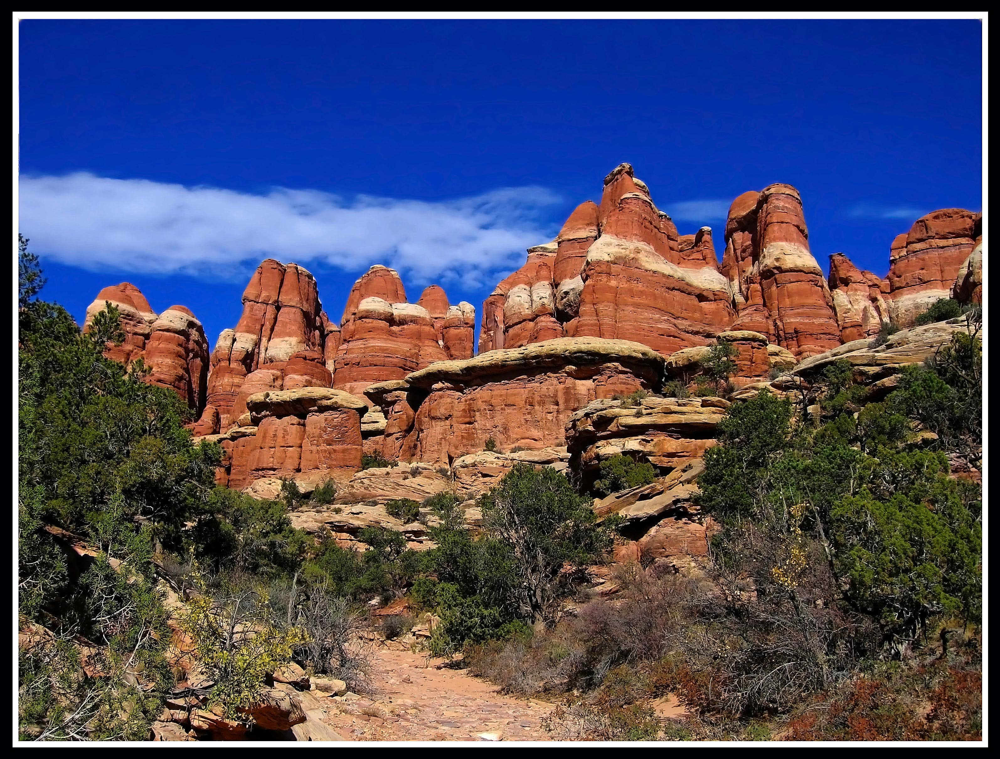 The Needles of Canyonlands - Oct. 15-18 2009