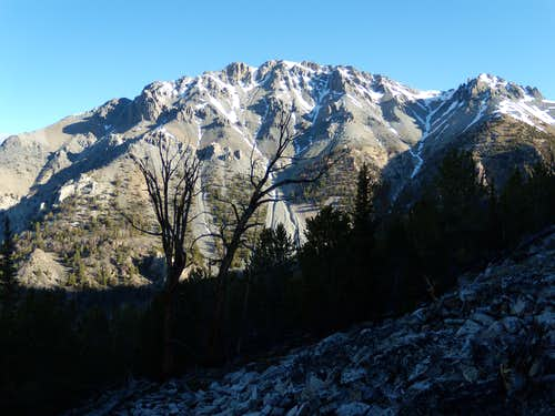 Southern aspect of Mt. Morrison