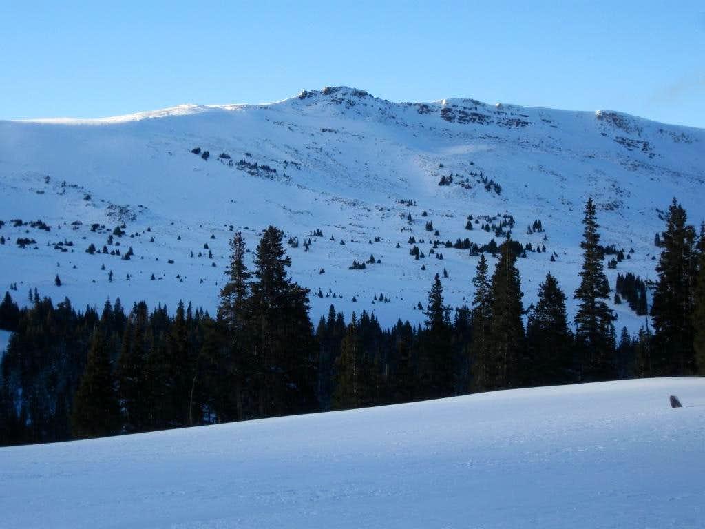 Jacque Ridge