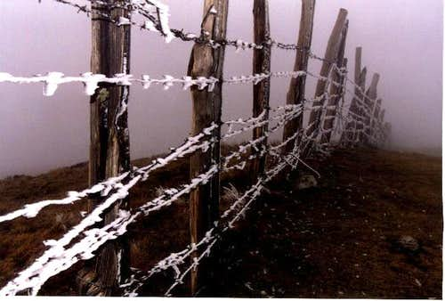 Adi\'s wire fence in a foggy...