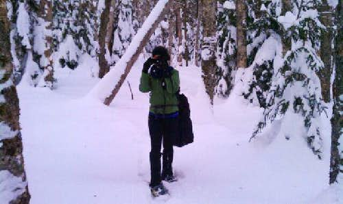 Bushwhacking in the Pemi Wilderness 2/12/11
