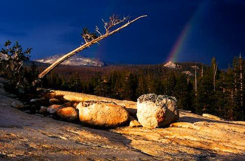 Tuolumne Rainbow