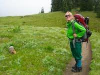 A Friendly Marmot on the Wonderland Trail