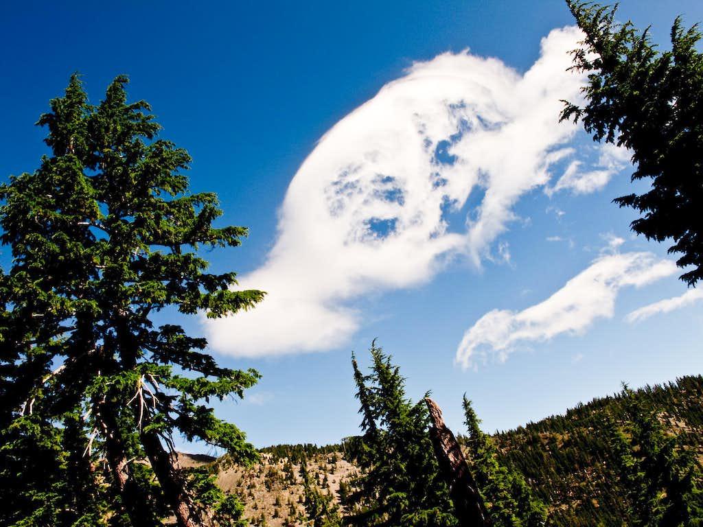 Bailey's Resident Happy Cloud
