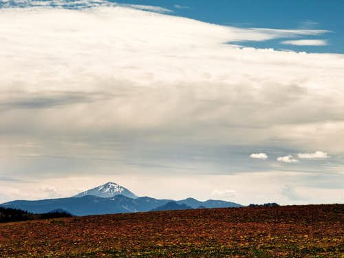 Mt. McLoughlin Viewed From Dutton Ridge
