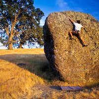 Nut Tree Boulders #1