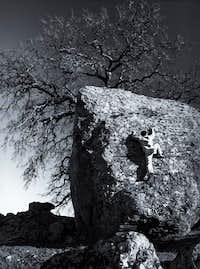 Nut Tree Boulders #2