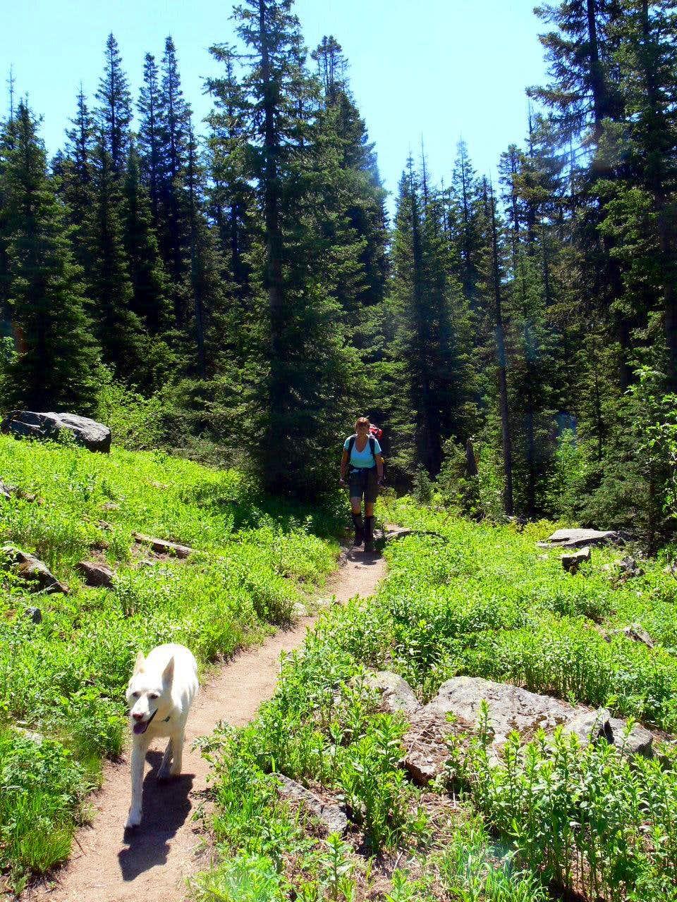 Joanna Hiking through the Meadows