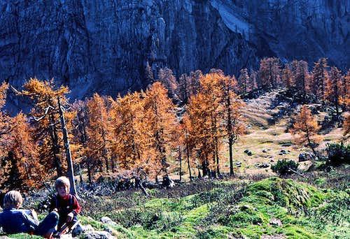 Autumn on Slemenova spica.