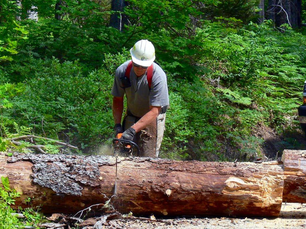 The Log Getting Cut