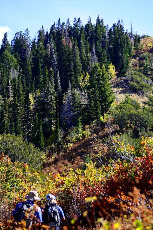 Approaching Millvue Peak