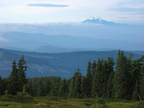 Mount Adams from the north...