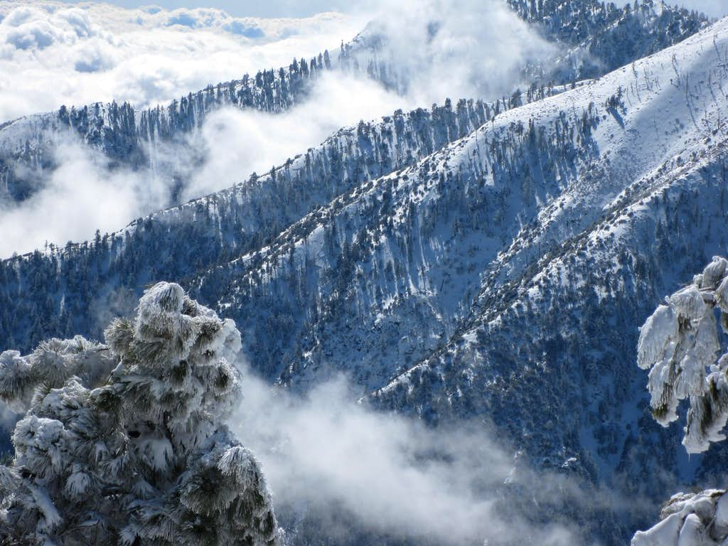 Fantasy in White near Wrightwood, CA