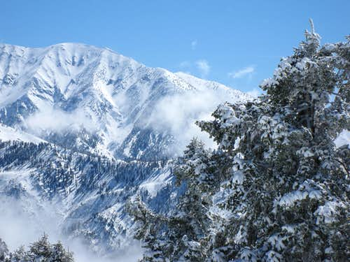 View Toward Mt. Baldy from Grassy Hollow