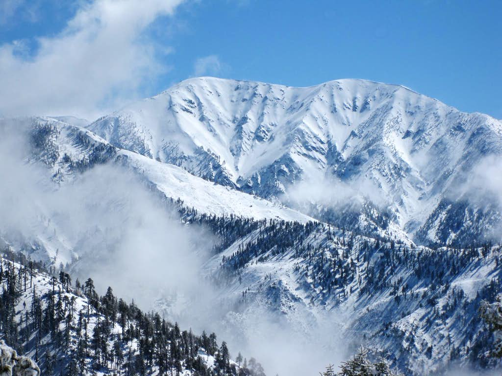 View Toward North face of Mt. Baldy from Grassy Hollow