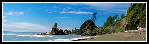 The Washington Coast