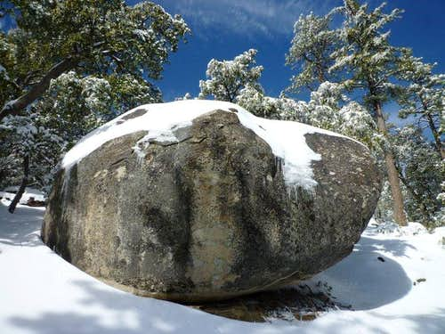 Black Mtn Bouldering or Baked Potato?