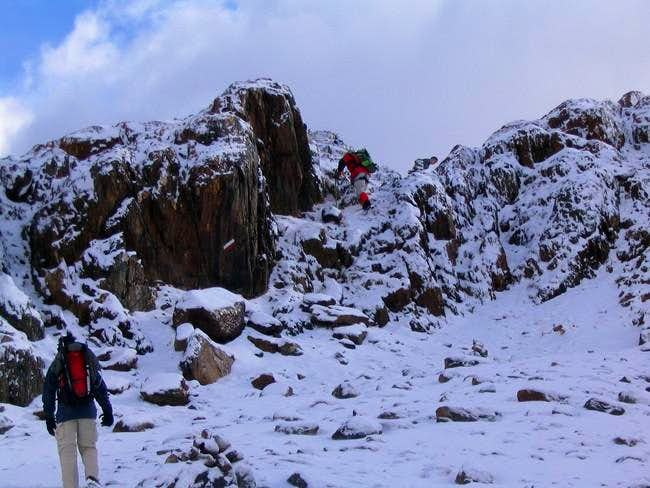 Making our way up to Cima...