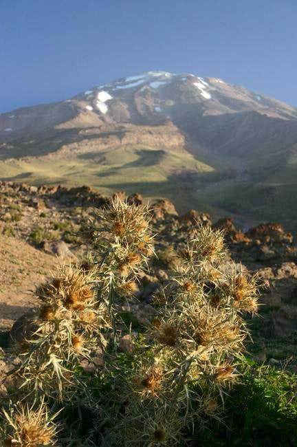 View from Goosfand Sara at 3000m