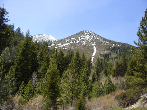Point 9201 from White's Creek loop