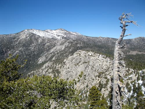 Northern San Jacinto Mountains