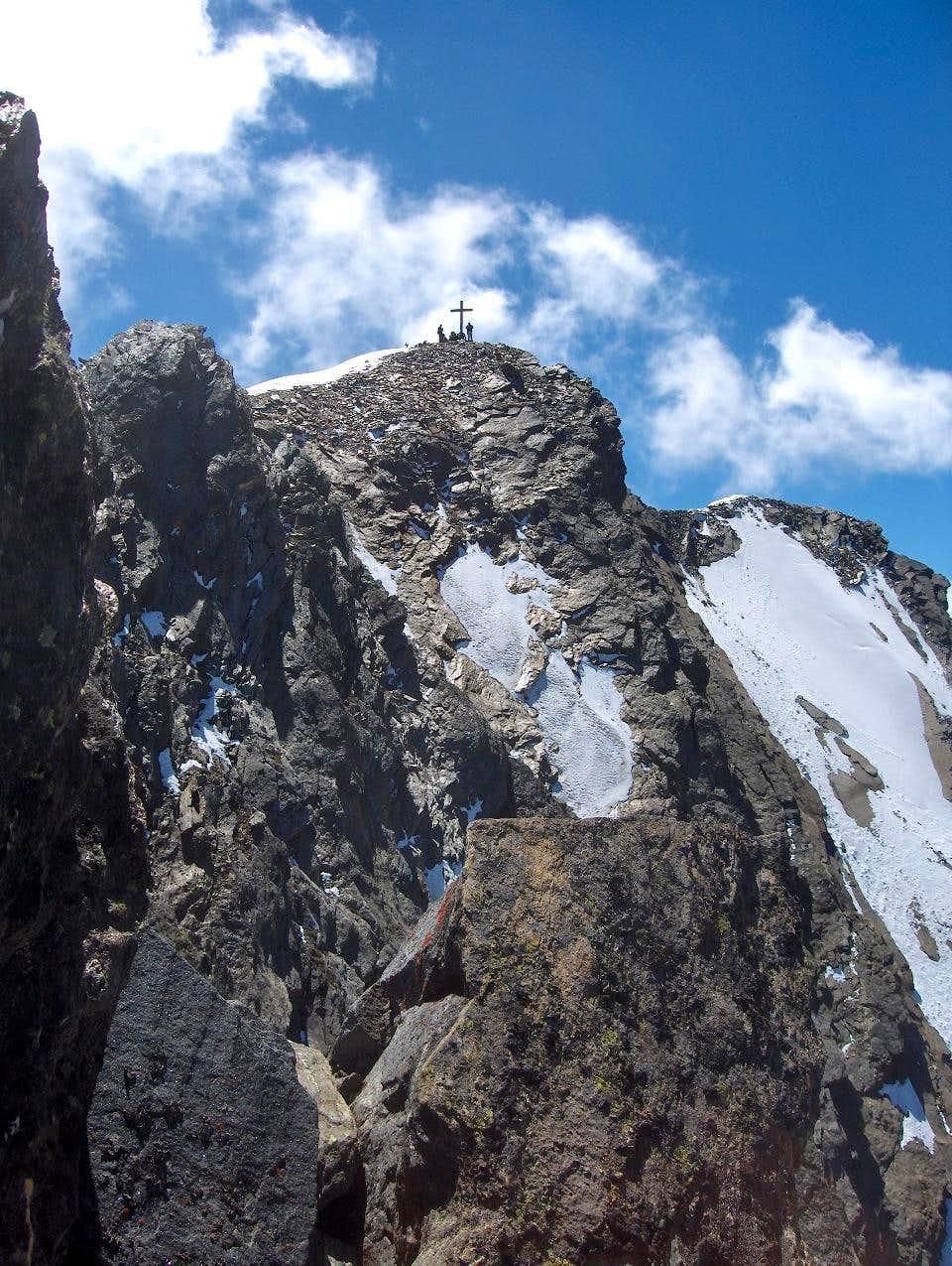 Ants on the summit