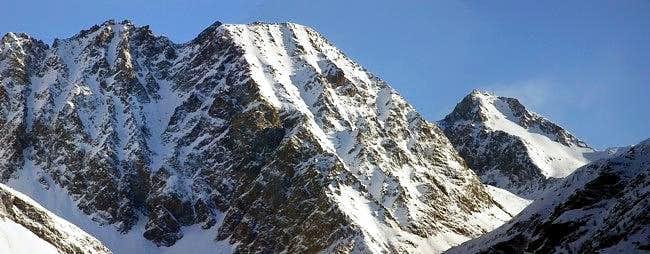 Monte Grauson