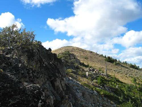 Fields Peak from the false...