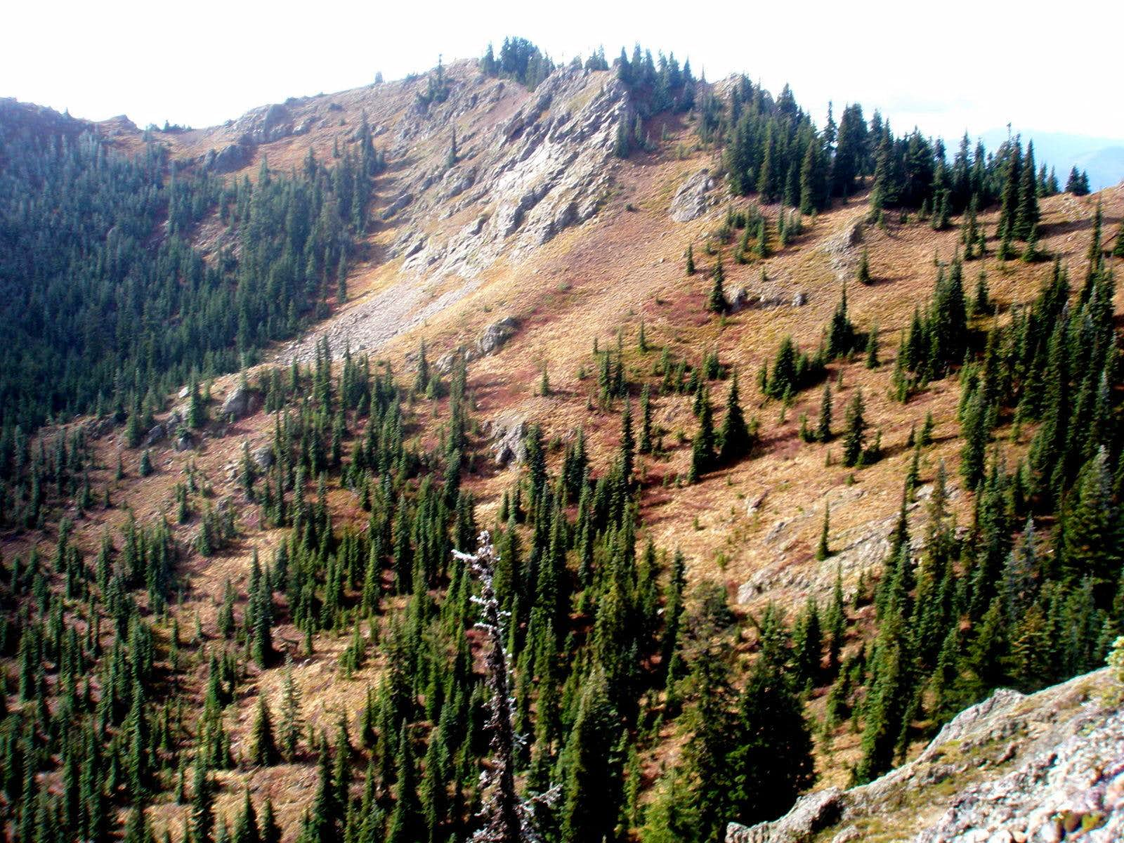 Kachess Ridge and French Tongue