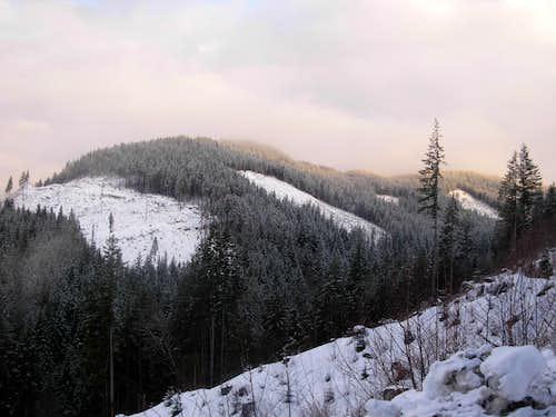 Mount Washington (Skagit)