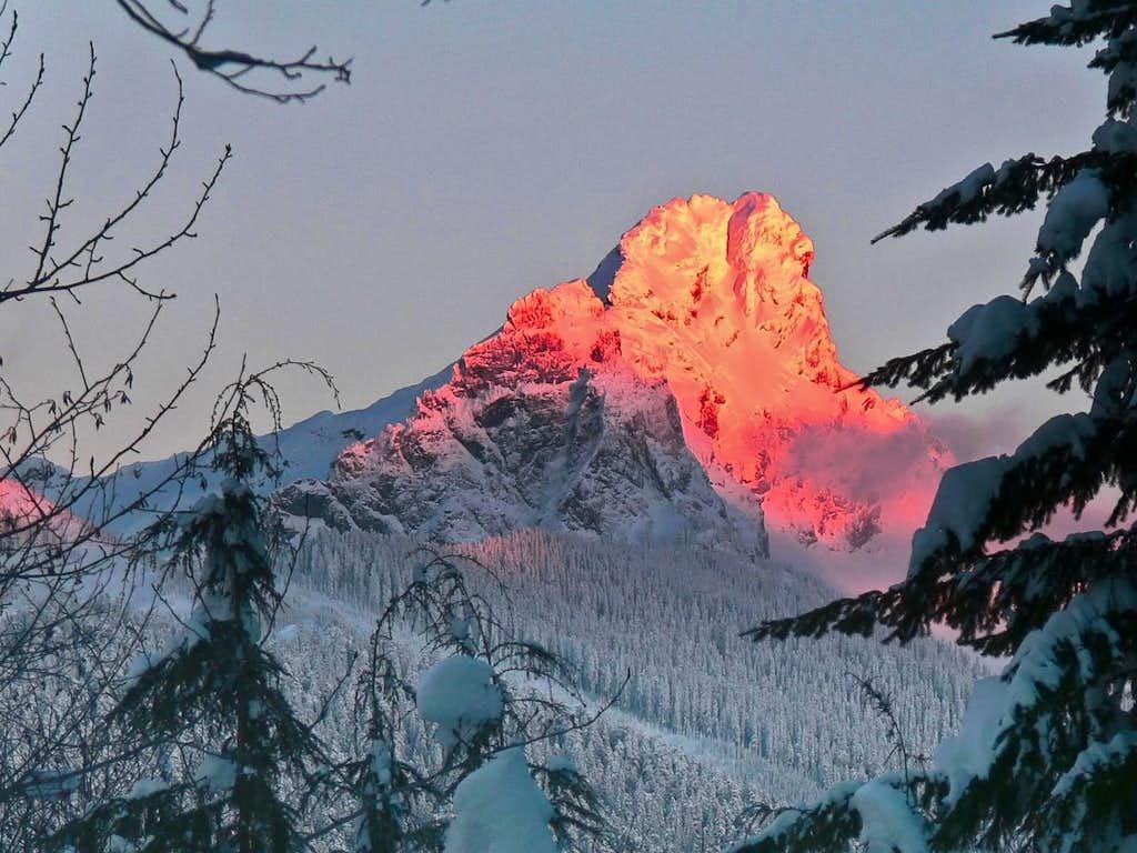 Alpenglow on White Chuck through the Trees