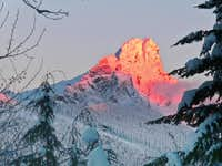 Alpenglow on White Chuck through the Trees