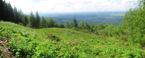 Panoramic View from Tiger Mountain
