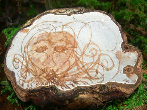 Tree Carving on Tiger Mountain