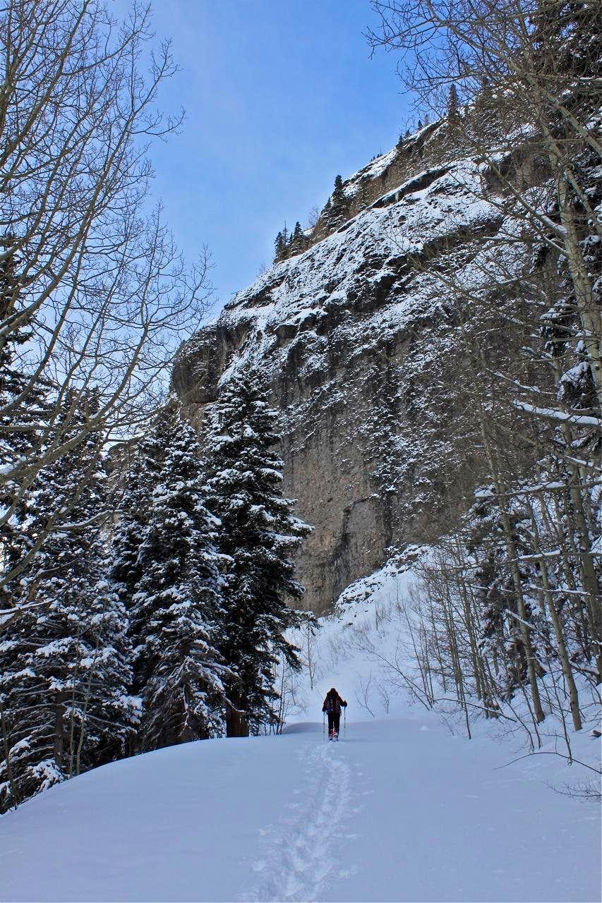 Winter Camp Bird Road