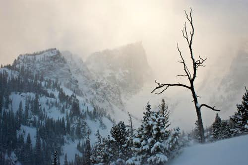 Winter Storm Over Hallett Peak
