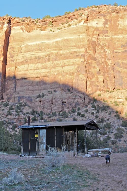 Old sheepherder\'s cabin