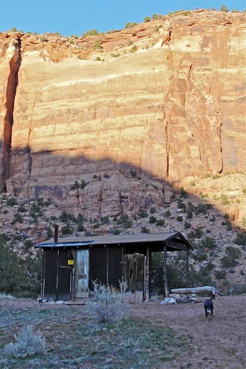 Old sheepherder's cabin