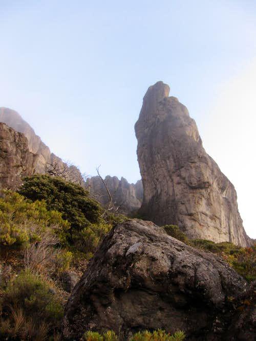 cerro crestone