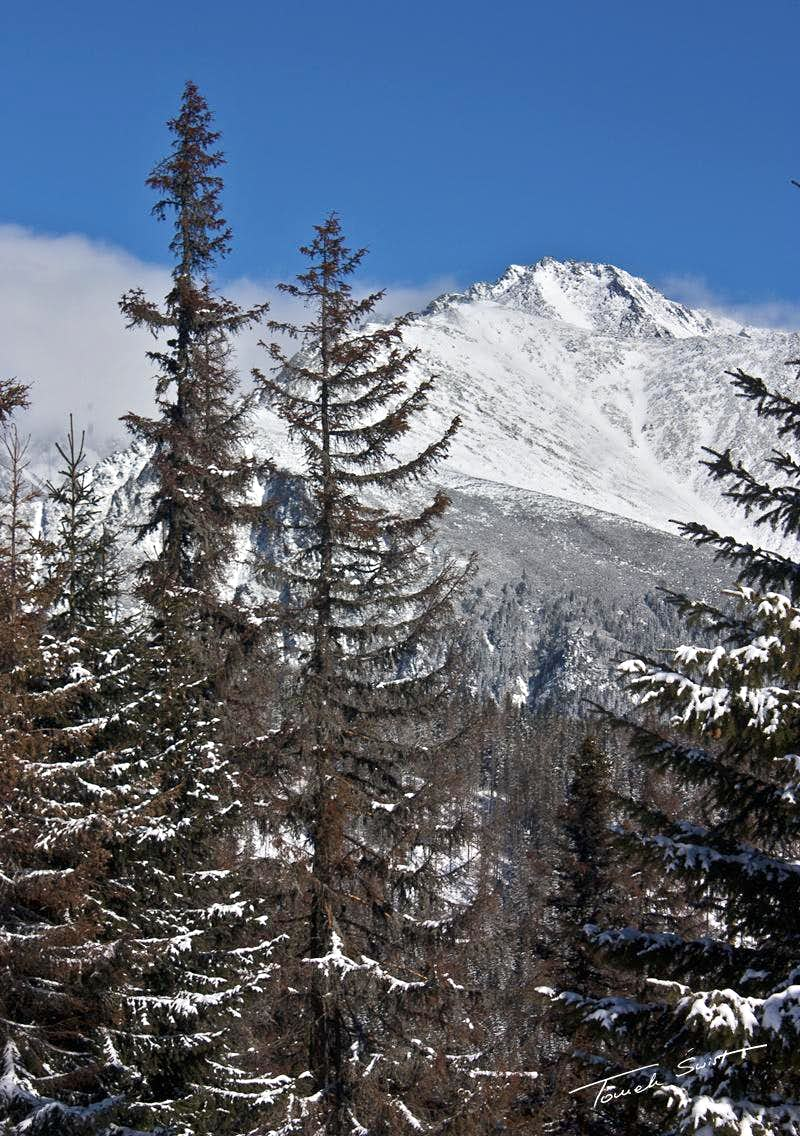 Koncista from West