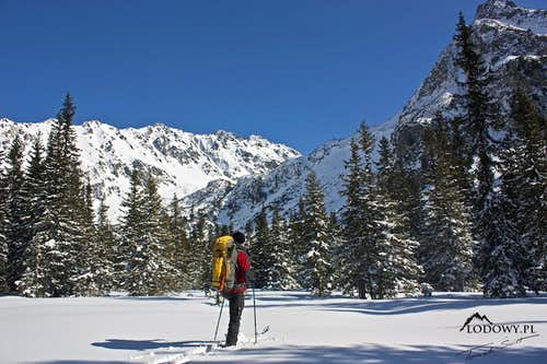 Following wolf's trace. Tatra winter adventure