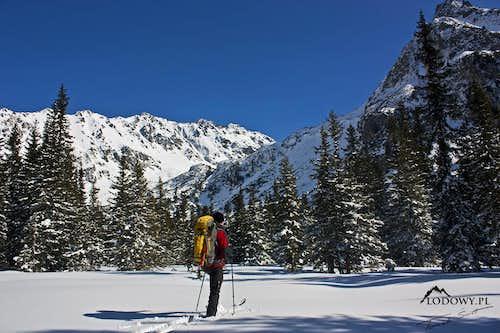 Following wolf's trace. Tatra winter adventure