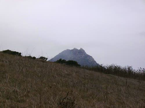 Bishop Peak From Lemon Grove Loop