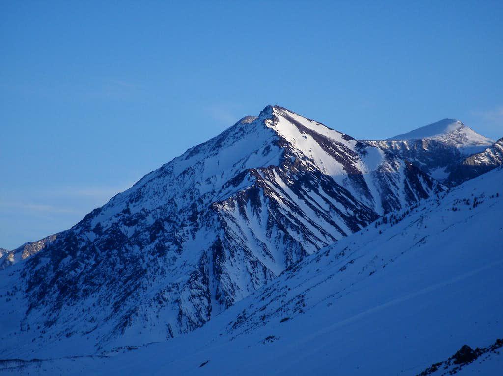 Mt. Morgan's Nevahbe Ridge