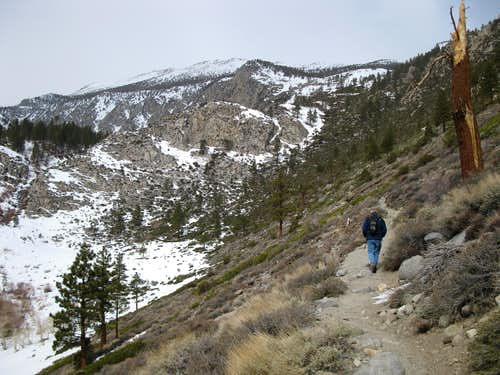 Hiking in Big Pine Creek Canyon