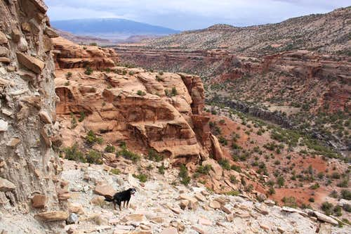 Rocky path into the canyon