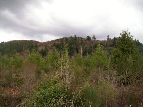 Sugarloaf Mountain (Cascade Foothills)
